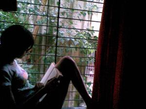 Rain and the window